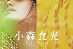 2014年剧情电影《小森林●夏秋篇》BD日语中字版