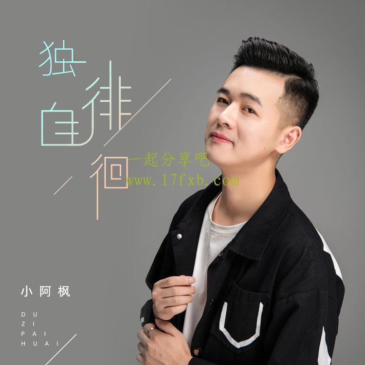 小阿枫-《独自徘徊》 超品质音乐MP3免费下载 第1张