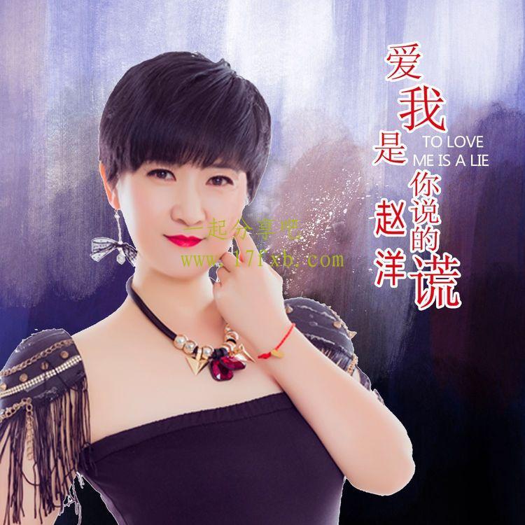 赵洋-《爱我是你说的谎》 超品质音乐MP3免费下载 第1张